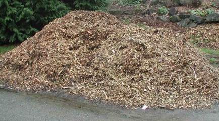Free Wood Chippings in London