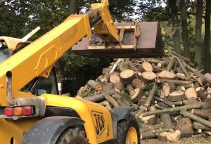 buy-logs-in-bulk