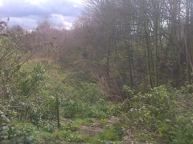 Hither Green Nature Triangle Lewisham