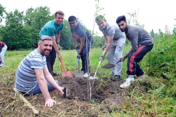 Sponsored Memorial Tree Planting in Ealing