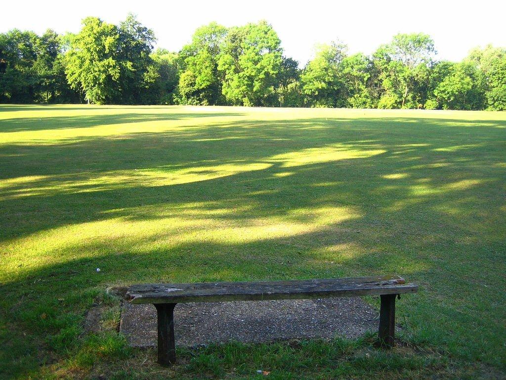 Barnes Common Cricket Green