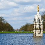 The Trees of Bushy Park: What Are the Strange-Looking Tree Stumps?