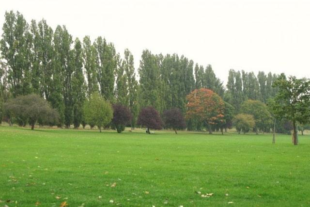 Chinbrook Meadows Lewisham