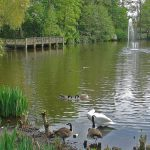 The Top Five Parks in Lewisham