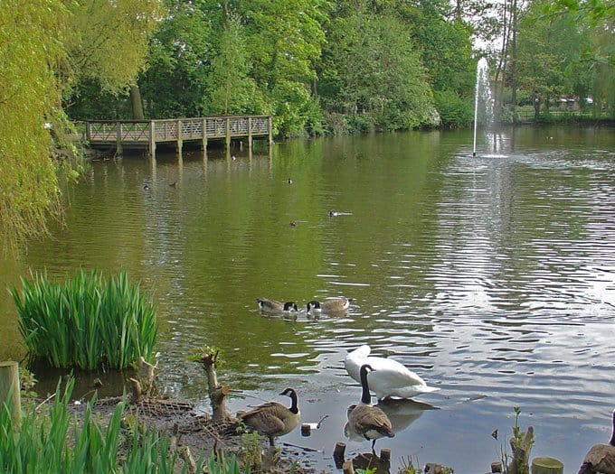 Top Five Parks Lewisham