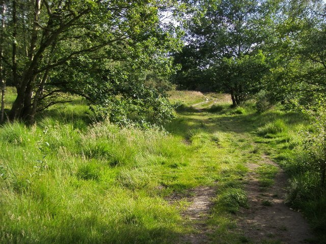 The History of Wimbledon Common