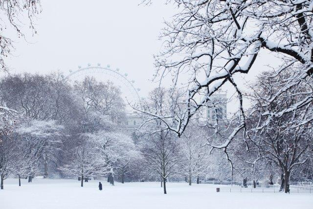 Snow in St James's Park