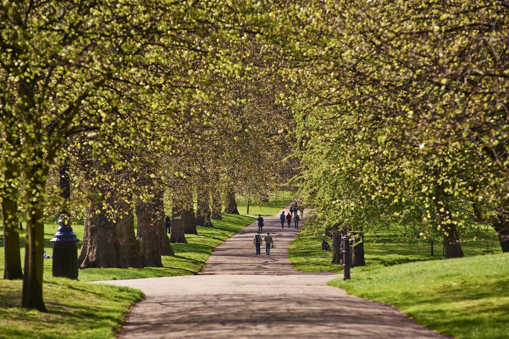 0_Green Park in Spring