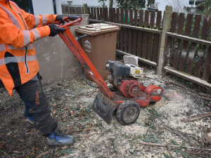 Stump Removal in Cheam