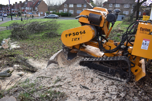 Tree Stump Grinding London