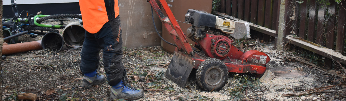Tree Stump Removal London Header
