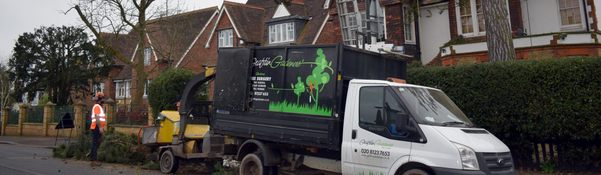 Tree Surgery for Homeowners London Header