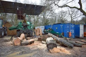 Tree Surgery Waste & Its Use for Biomass Fuel