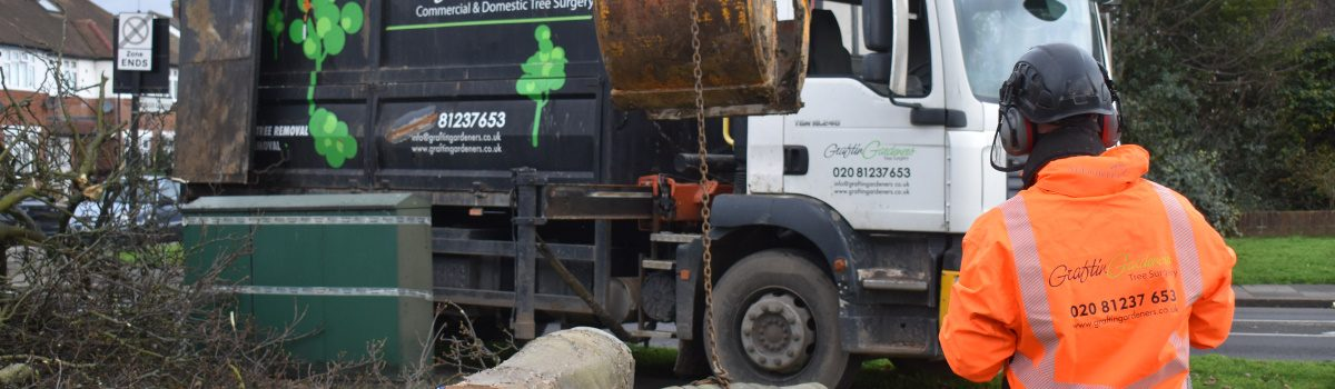 Tree Surgery Services London Header