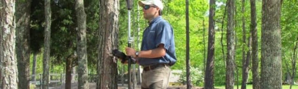 Types of Tree Surveys