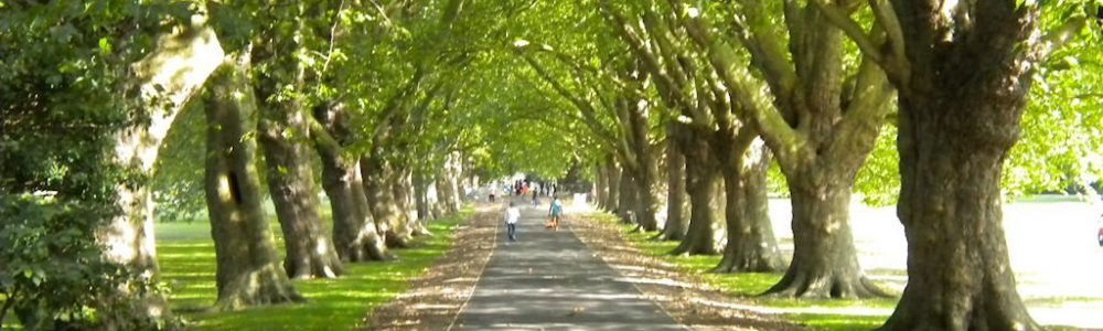 London Greenest Cities